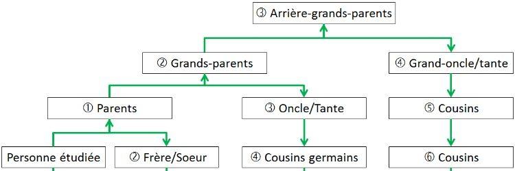 Pierre Soulas et les degrés de parenté